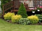 10 секретов садоводства которые должен знать каждый человек